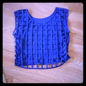 Royal Blue Crop Top w/ Netted Back